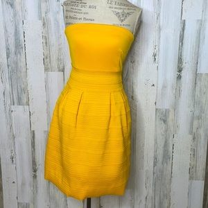 New York & Co strapless fit & flare dress NWT